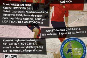 Zapisy do VI edycji ligi piłki halowej Company Futsal League sezon 2018/2019